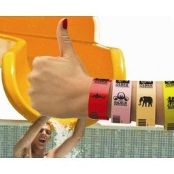 Zebra Z-Band splash wristbands red